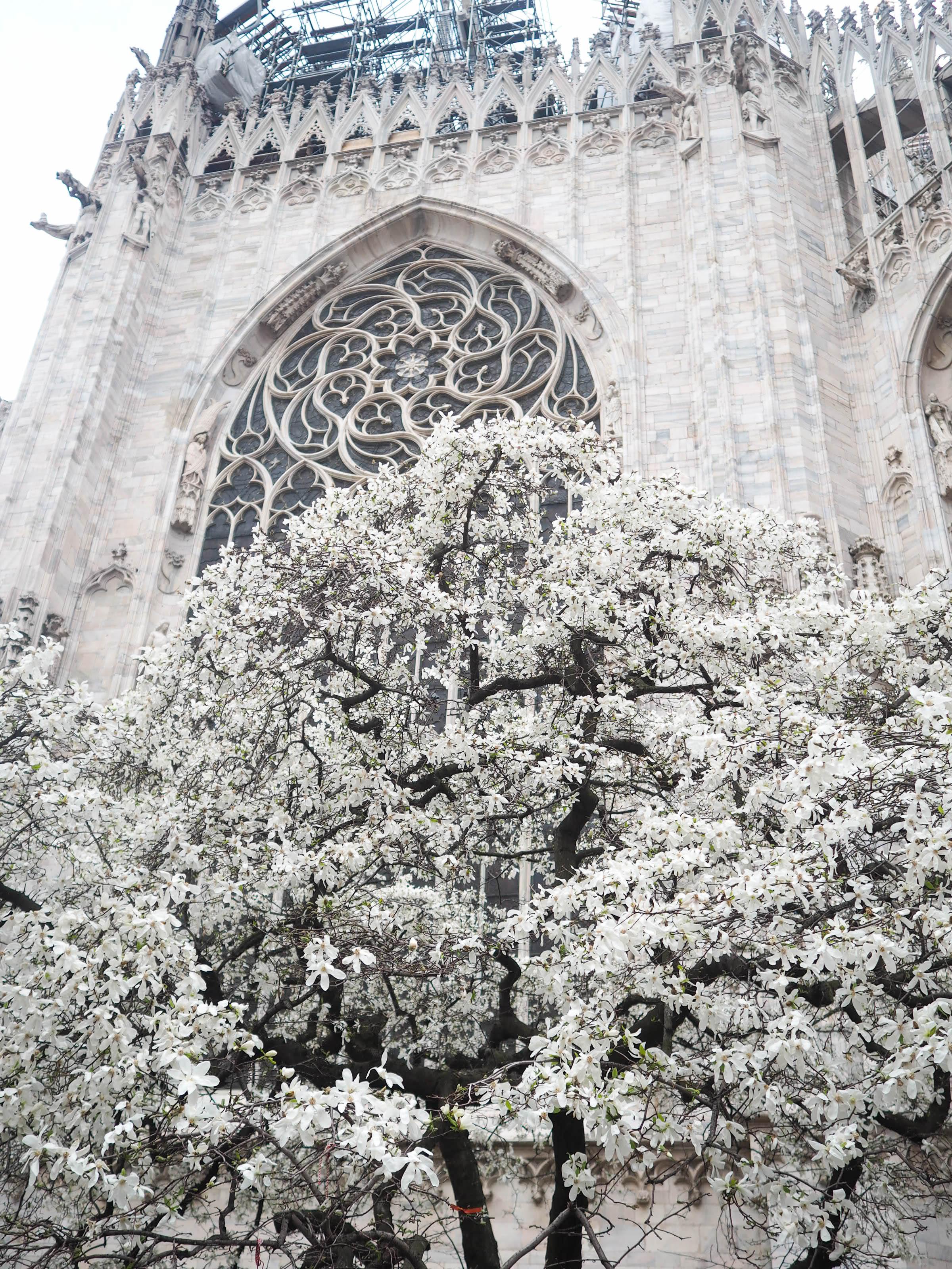 milano, april